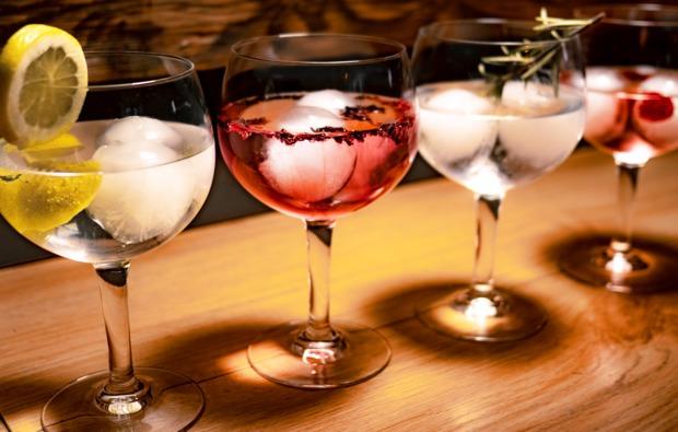 gin-verkostung-vils-bg4