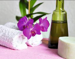 wellness-artikel