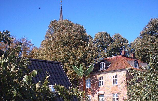 stadt-kultour-hamburg-gebaeude-natur