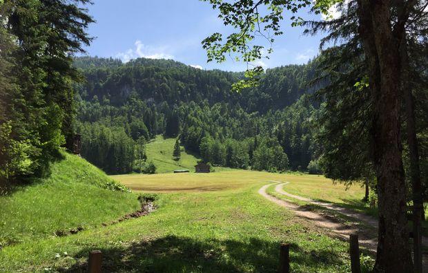 kulinarische-bergwanderung-reit-im-winkl-wald