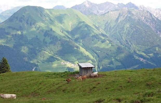 wandertouren-reutte-panorama