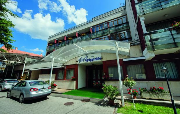 majerik-hotel-heviz_big_2