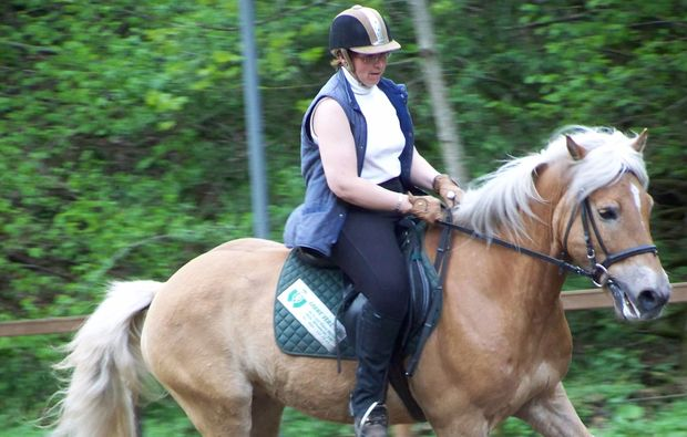 pferde-abenteuer-gams-bei-hieflau-familientag