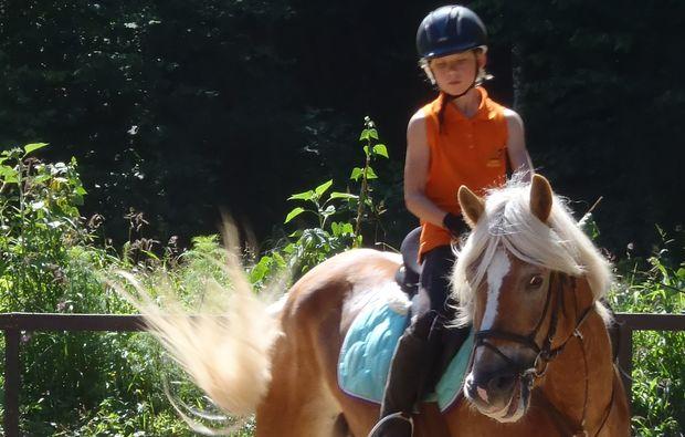 pferde-abenteuer-gams-bei-hieflau-kurs
