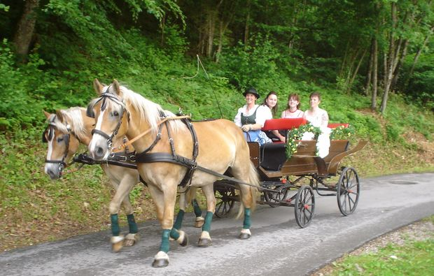 pferde-abenteuer-gams-bei-hieflau-kutsche