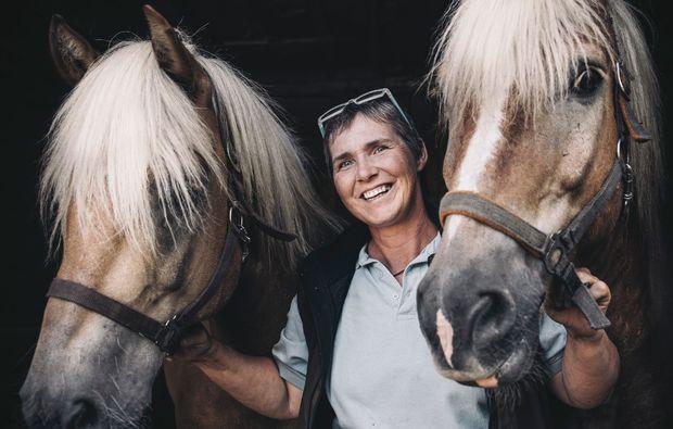 pferde-abenteuer-gams-bei-hieflau-pferde