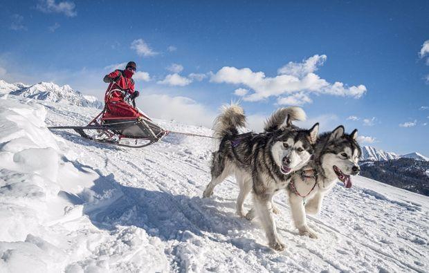 schlittenhundefahrt-telfs-bg1