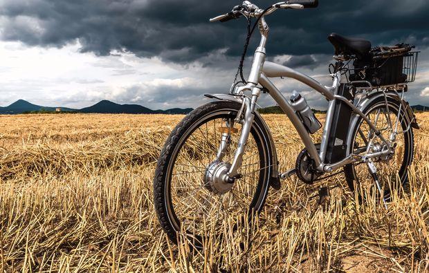 mountainbike-tour-rust-am-neusiedlersee-fahren