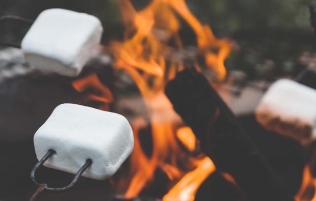 rentierschlittenfahrt-arvidsjaur-marshmallow