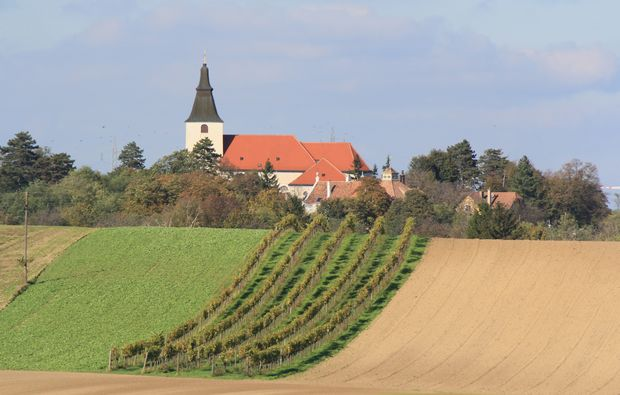 weingut-stillfried-kurztrip