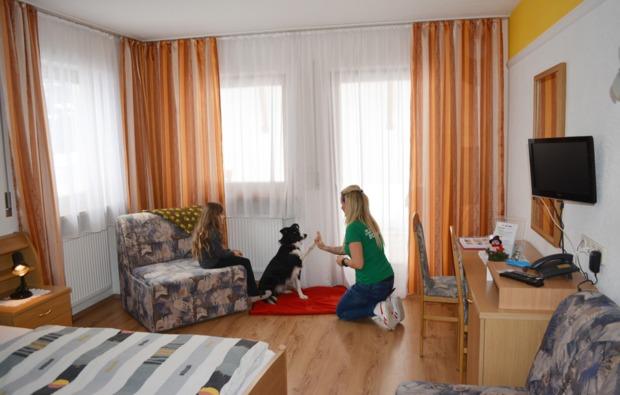 urlaub-mit-hund-steinhaus-im-ahrntal-betreuung