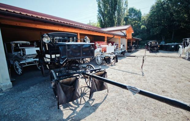 besichtgung-fiaker-stall-mit-kutschfahrt-bg5