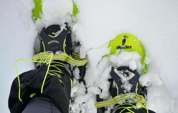 aktivurlaub-arvidsjaur-schneeschuhe