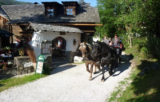 romantische-pferdekutschfahrt-fuer-zwei-bad-kleinkirchheim-bg2
