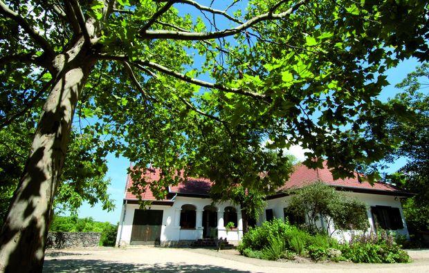 kurzurlaub-bonnya-hotel