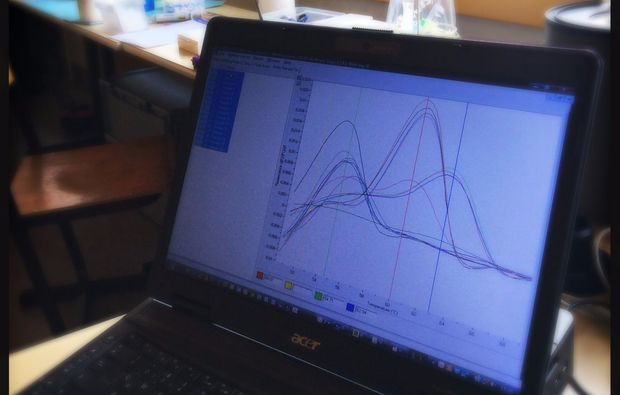 dna-analysieren-graz-analyse