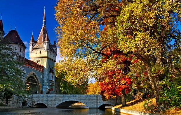erlebnisreise-budapest-donau