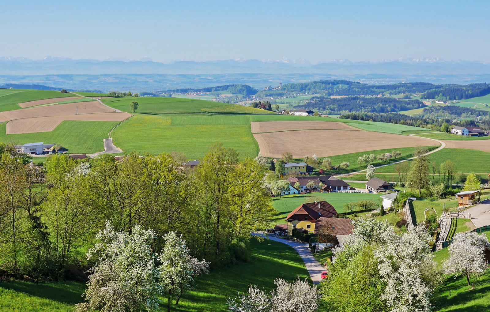 erholsame-zweisamkeit-landgasthof-zur-zugbruecke-bg5