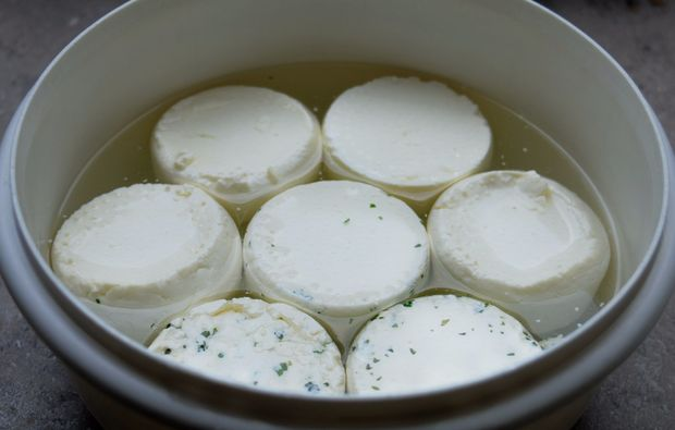 kaeseseminar-wien-kaese-topf