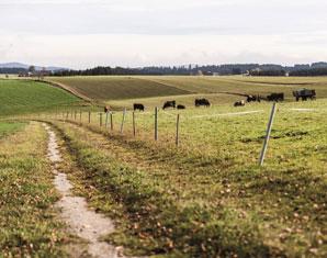 landhotel-alpenblick-landidylle