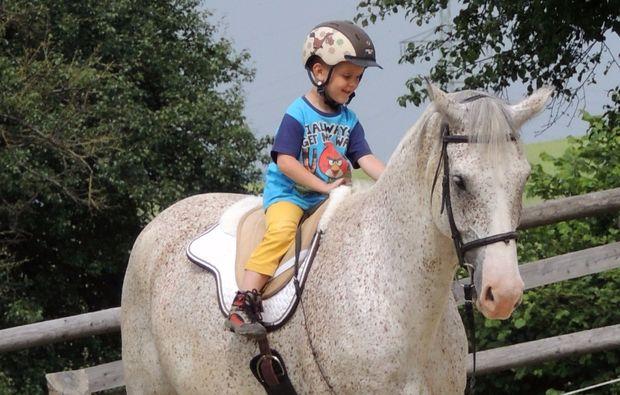 pferde-abenteuer-markersdorf-grey