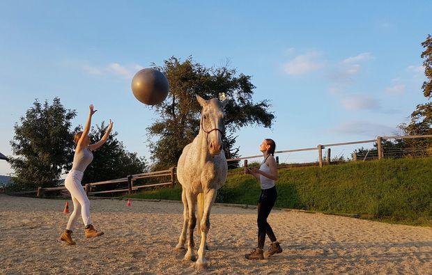 pferde-abenteuer-markersdorf-play