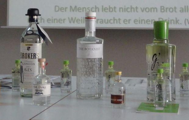 gin-verkostung-linz-tasting