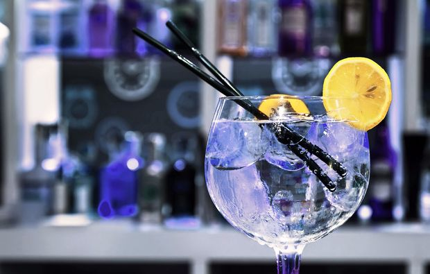 gin-verkostung-linz-tonic