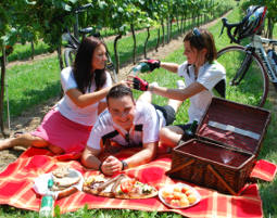 picknick-zauber