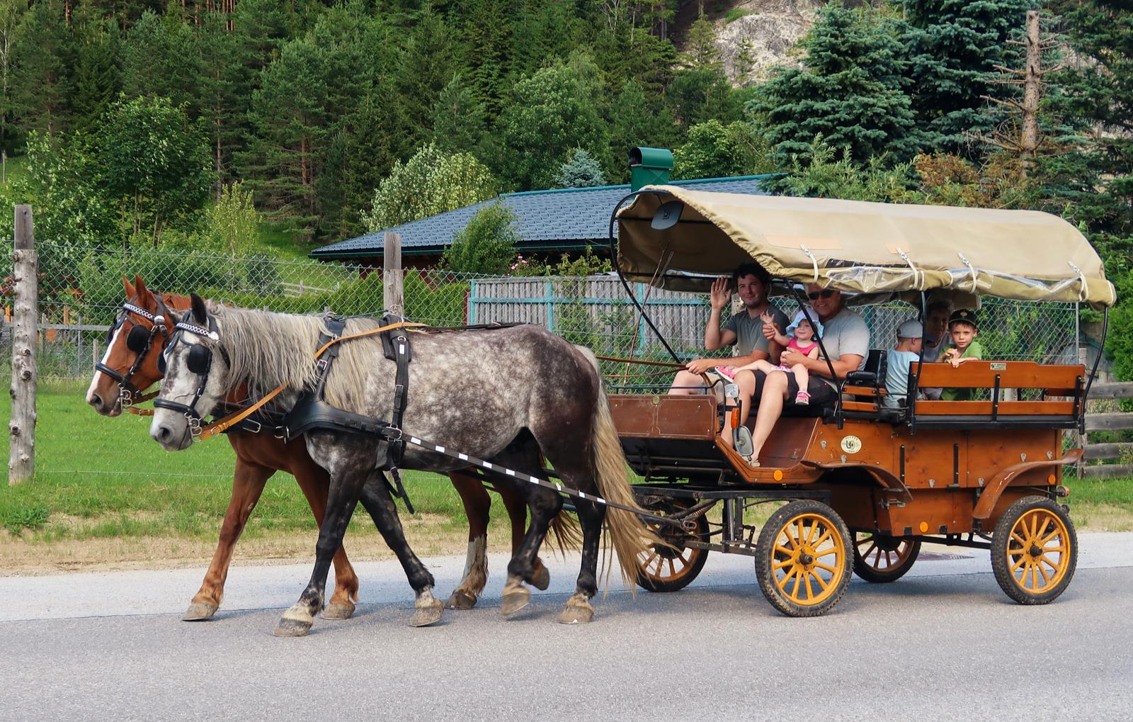 picknickfahrt-mit-kutschenwagen-bg2