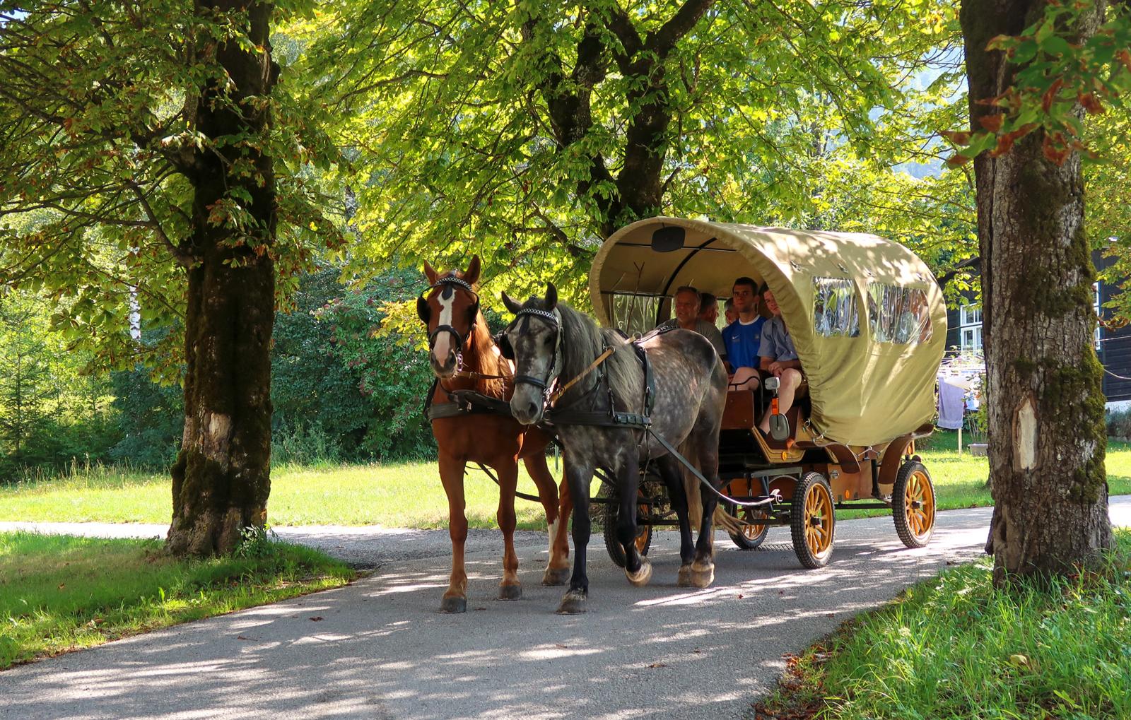 picknickfahrt-mit-kutschenwagen-bg4