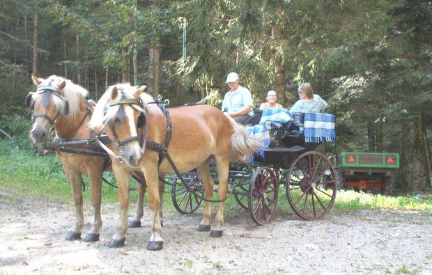 romantische-pferdekutschfahrt-fuer-zwei-gams-fahrt