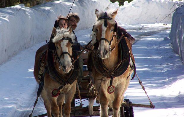 romantische-pferdekutschfahrt-fuer-zwei-gams-love
