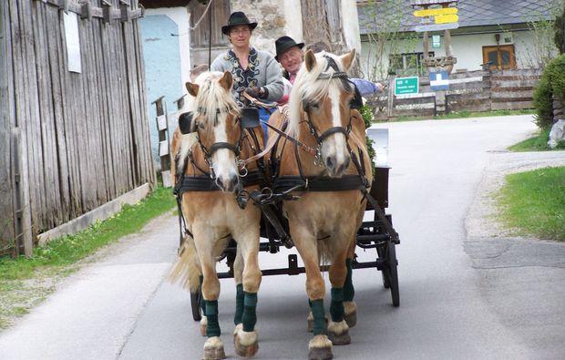 romantische-pferdekutschfahrt-fuer-zwei-gams-sommer