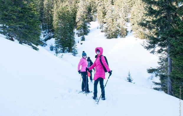 schneeschuh-wanderung-graz-tour