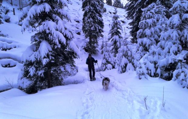 husky-schneeschuhtrekking-triebental-outdoor-spass