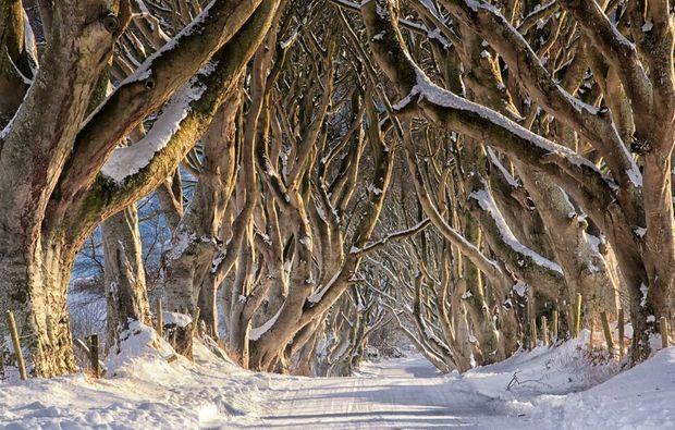 erlebnisreise-belfast-thrones-westeros