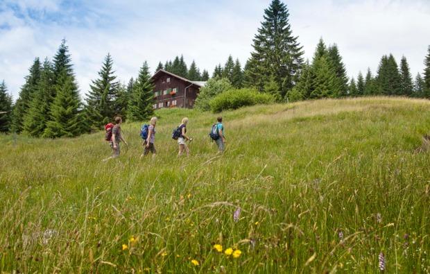 almhuette-oberstdorf-panorama