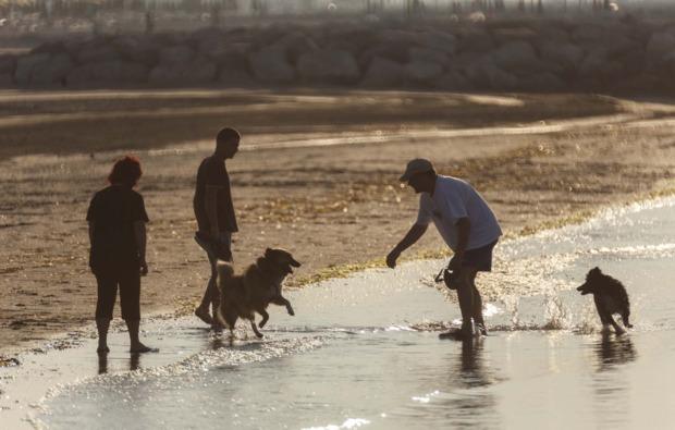 urlaub-mit-hund-cavallino-hundespass