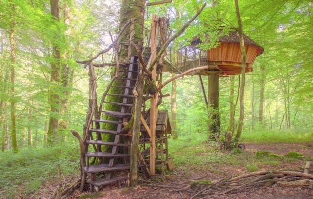 baumhaus-uebernachtung-guyonvelle-natur