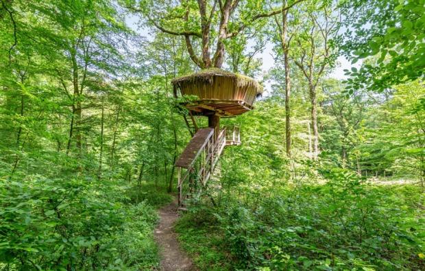 baumhaus-uebernachtung-guyonvelle-treehouse