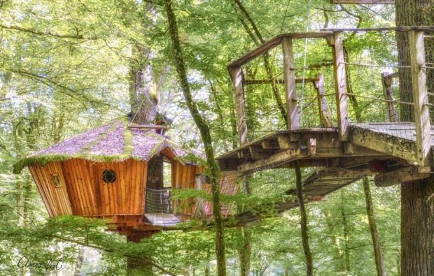 baumhaus-uebernachtung-guyonvelle