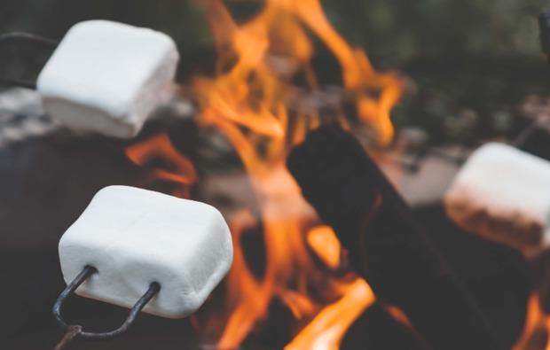 rentierschlittenfahrt-abborrtraesk-marshmallow