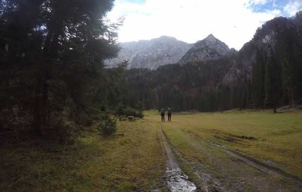walkfly-gleitschirm-tandemflug-natur