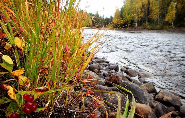 wildnis-survival-wochenende-sele-fluss