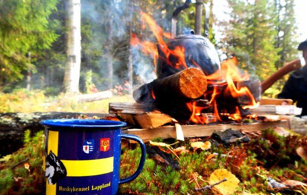 wildnis-survival-wochenende-sele-kochen