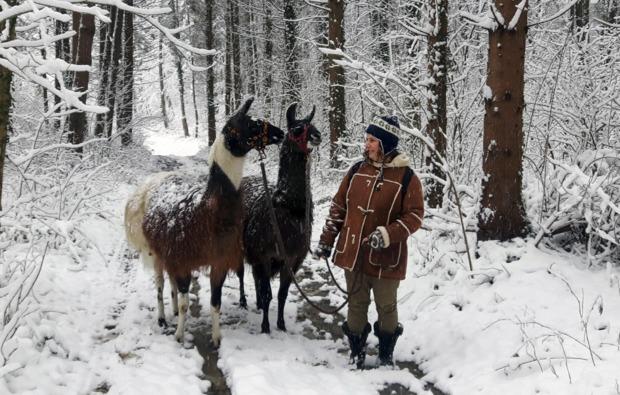 lamawanderung-neudorf-winter