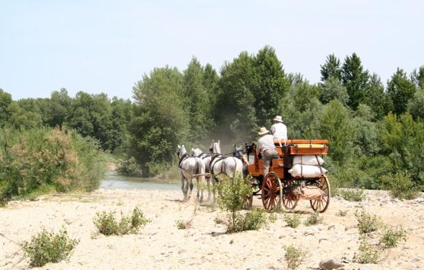 aktivurlaub-siena-bg5
