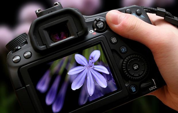 fotografie-workshop-online-seminar-bg1