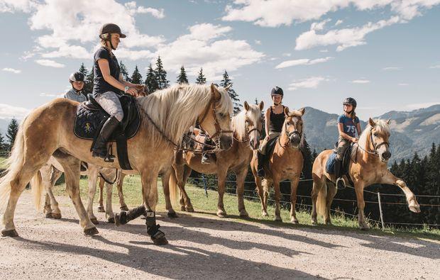 pferde-abenteuer-gams-bei-hieflau-ausfluege